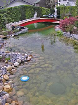 Biofilmreaktor in der anwendung bei koi teichen for Koi spawning pool